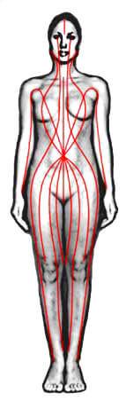 Thai Massage Sen Lines - Front